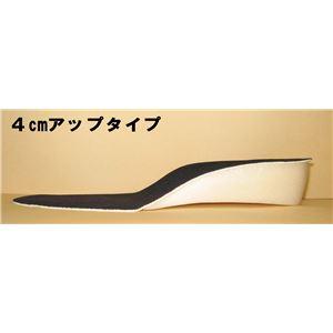 美脚・足長インソール 2足組(2cm、4cmアップ) 2cmアップ(Lサイズ) f05