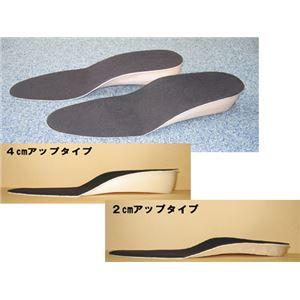 美脚・足長インソール 2足組(2cm、4cmアップ) 4cmアップ(フリーサイズ)
