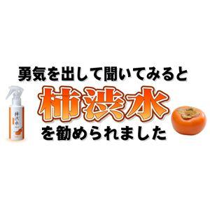 モデム パーシモンローション(150ml)