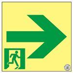 高輝度蓄光通路誘導標識 → SSN961