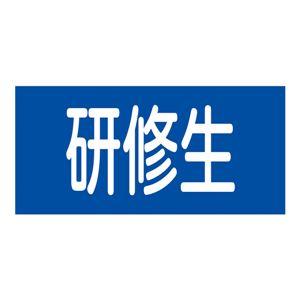 ゴム腕章 研修生 GW-13M