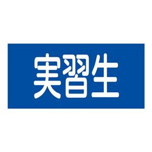 ゴム腕章 実習生 GW-12S