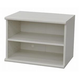 カラーボックス(収納棚/カスタマイズ家具) 2段 【幅58.9cm×高さ43.5cm】 エイ・アイ・エス 『エシカ』 5060 ホワイト の画像