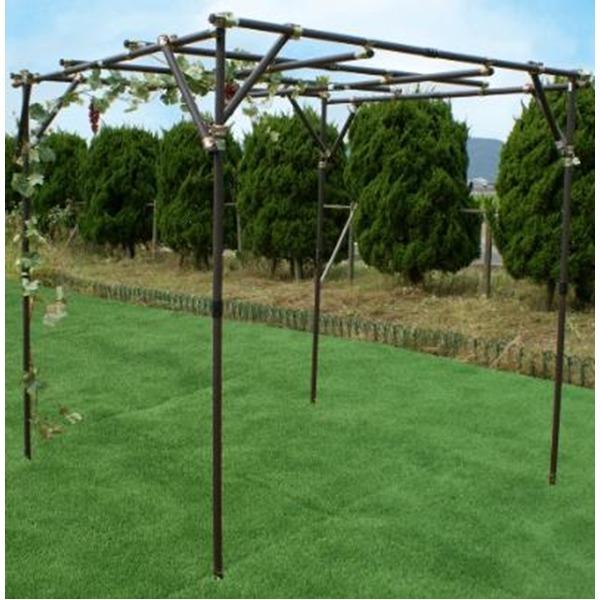ガーデンアグリパイプ(果樹棚セット/園芸棚)