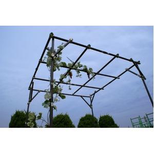 ガーデンアグリパイプ(果樹棚セット/園芸棚) ...の紹介画像2