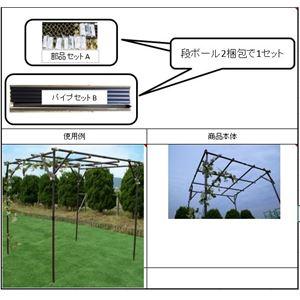 ガーデンアグリパイプ(果樹棚セット/園芸棚) ...の紹介画像3