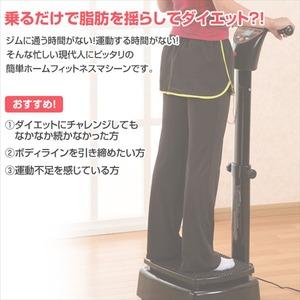 ホームフィットネス ぶるゆれマシーン He-60199