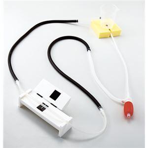 血圧測定原理学習用シミュレーター/看護実習モデル 「けつあつくん」 軽量・コンパクト M-154-0