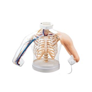 上腕部筋肉注射説明模型(看護実習モデル人形) 水注入可 ランプ/ブザー/収納ケース付き M-155-0