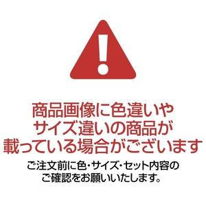 洗いやすいキッチンマット/インテリアマット 【60cm×240cm】 ベージュ ループタイプ 日本製 『優踏生』