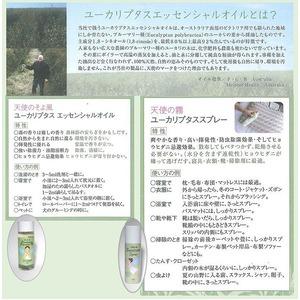 ユーカリプタスエッシェンシャルオイル100ml 天使のそよ風 清涼 精油 原液 ダニ対策