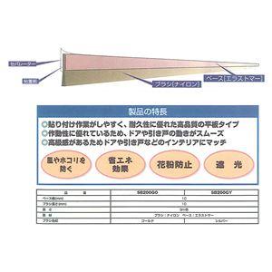 槌屋 すき間ブラシシール SB200GY シルバー