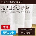 最大18℃断熱 防炎 UVカット レースカーテン 1枚のみ 150×223cm アイボリー 見えにくい 省エネ バラ柄 日本製 帝人 デザイヤー