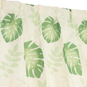 8種類から選べる4枚組デザインカーテン 100×135cm グリーン ミラーレース モンステラ柄 ボタニカル柄 洗える モンステラ