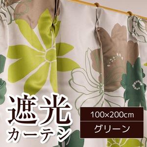 南国風遮光カーテン 2枚組 100×200cm グリーン 花柄 遮光 洗える ソラン