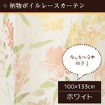 8種類から選べるボイルレースカーテン 【2枚組 100×133cm/ホワイト】 タッセル付き 柄物 ボタニカル 『ボイルエーゼ』商品画像