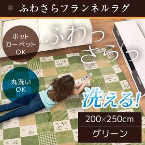 ラグ 200×250cm 長方形 グリーン 洗える ラグマット ホットカーペット対応 床暖房 秋用 冬用 プチカントリーラグ