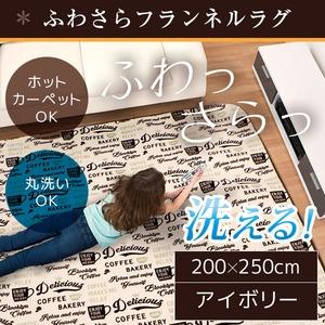 ラグ 200×250 長方形 アイボリー 洗える ラグマット ホットカーペット対応 床暖房 秋用 冬用 カフェラグ