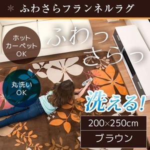 ラグ 200×250 長方形 ブラウン 洗える ラグマット ホットカーペット対応 床暖房 秋用 冬用 フロールラグ