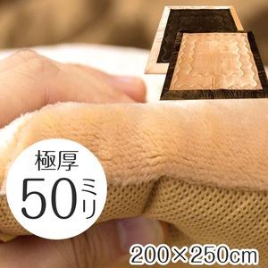 極厚ボリュームタイプ ラグマット/絨毯 【200cm×250cm 長方形 ブラウン】 ホットカーペット 床暖房対応 防音 〔リビング〕