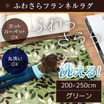 ラグ 200×250cm 長方形 グリーン 洗える ラグマット ホットカーペット対応 床暖房 秋用 冬用 フォリアラグ