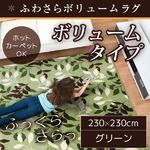 ラグ ボリュームタイプ 230×230cm 正方形 グリーン ラグマット ホットカーペット対応 床暖房 秋用 冬用 フォリアボリュームラグ