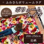 ラグ ボリュームタイプ 200×250 長方形 ベージュ ラグマット ホットカーペット対応 床暖房 秋用 冬用 ボタニカルボリュームラグ