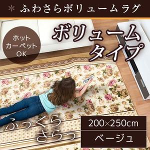 ラグ ボリュームタイプ 200×300 長方形 ブラウン ラグマット ホットカーペット対応 床暖房 秋用 冬用 ボーダーフラワーボリュームラグ