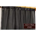 カラーレースカーテン 2枚組 100×176 ブラック ミラーレース 見えにくい 洗える アジャスターフック付き セルバ2