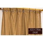カラーレースカーテン 2枚組 100×176 ブラウン ミラーレース 見えにくい 洗える アジャスターフック付き セルバ2