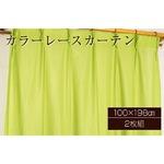 カラーレースカーテン 2枚組 100×198 グリーン ミラーレース 見えにくい 洗える アジャスターフック付き セルバ2