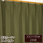 遮光カーテン 2枚組 100×135 ダークグリーン 無地 タッセル付き アジャスターフック付き エクセルの画像