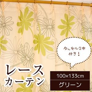 レースカーテン 2枚組 100×133 グリーン ボタニカル柄 リーフ柄 タッセル付き Lプラム