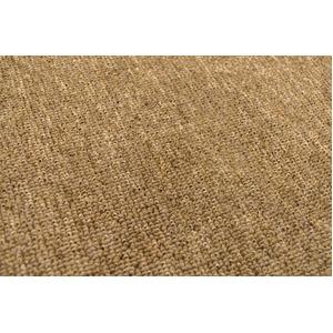 カーペット ラグ 平織 フリーカット ループ / 江戸間 4.5畳 261×261cm ブラウン プレーン