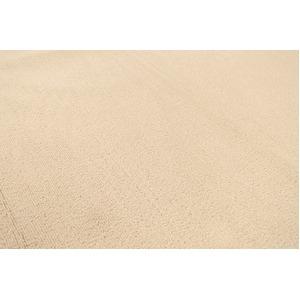 カーペット ラグ 平織 フリーカット ループ / 江戸間 6畳 261×352cm ベージュ プレーン
