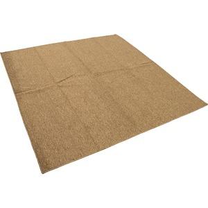 カーペット ラグ 平織 フリーカット ループ / 本間 3畳 191×286cm ブラウン プレーン