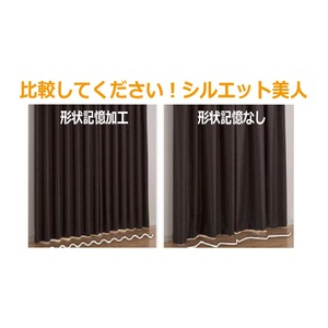 カーテン 2枚組 2枚セット 2P 防炎 2級遮光 100×丈100cm ブラック ダリア