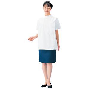 ケーシー型白衣/診察衣 【女子用 Lサイズ】 抗菌 制電 レディース 背面タック 胸ポケット・腰ポケット