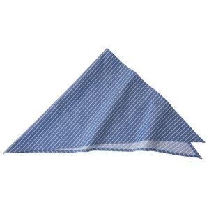 ストライプ三角巾ブルーKMB2941-22