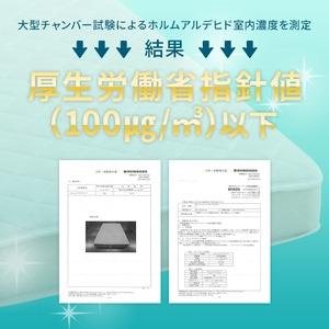マットレス クイーン Q ボンネルコイル 『 フィットスリーパー -理想的な寝姿勢をサポート-』 ホワイト 白 【1年保証】