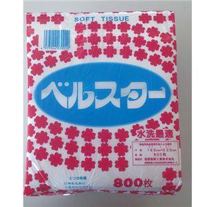 (業務用20セット)高野製紙ベルスターソフト800枚