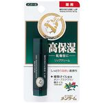 (業務用20セット) 近江兄弟社 モイスキューブブリップメントール4g