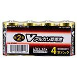 (業務用20セット) オーム電機 アルカリ乾電池 単2形4本 LR14/S4P/V