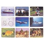 DLM 言語訓練写真カード1 生物と乗物2214S