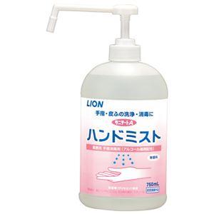 (まとめ) ライオンハイジーン サニテートAハンドミスト 750mL【×10セット】