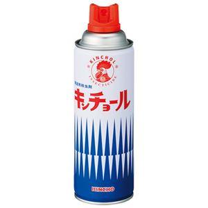 (まとめ) 大日本除蟲菊 家庭用殺虫剤 キンチョール 450mL【×10セット】