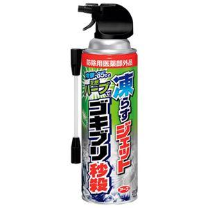 (まとめ) アース製薬 凍らすジェットゴキブリ秒殺 300mL【×5セット】