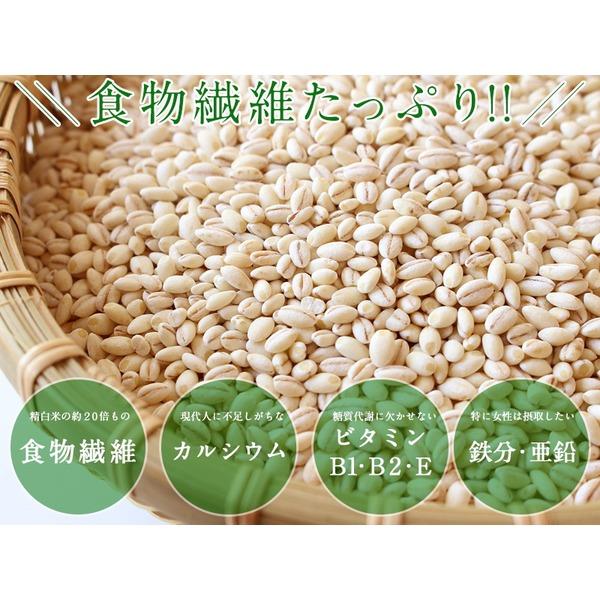 スープイン もち麦ごはん shi meal  5種類×各2個 合計10個セット