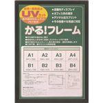 多目的 フレーム/額縁 【A4 ブラック】 表面カバー:UVカット機能付きPET 『かる!フレーム』