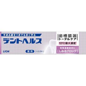 ライオン デントヘルス薬用ハミガキしみるブロック 28g × 10 点セット